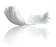 Заукпаем пух перо водоплавающей птици